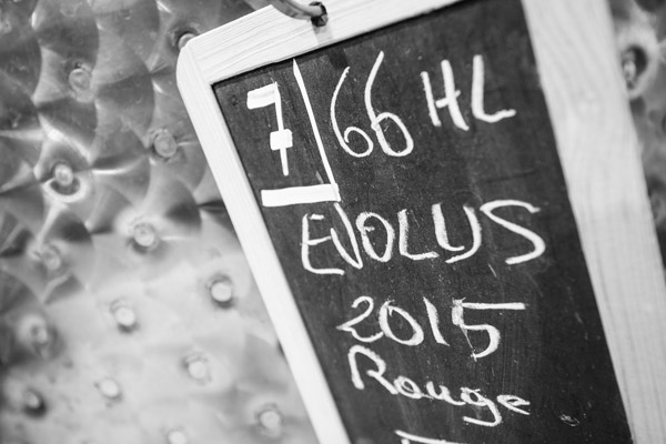 EVOLUS rouge 2015