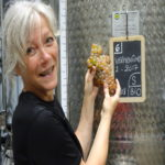 Tourisme du vin coteaux d'ensérune - Vendange millésime 2017 Coteaux d'ensérune-Tourisme du vin vendange millésime 2017-vendange et vinification-Vigneron
