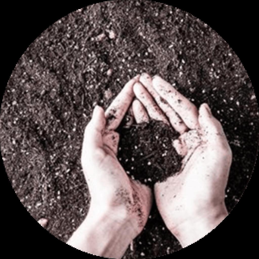Compost Bio dans les vignes