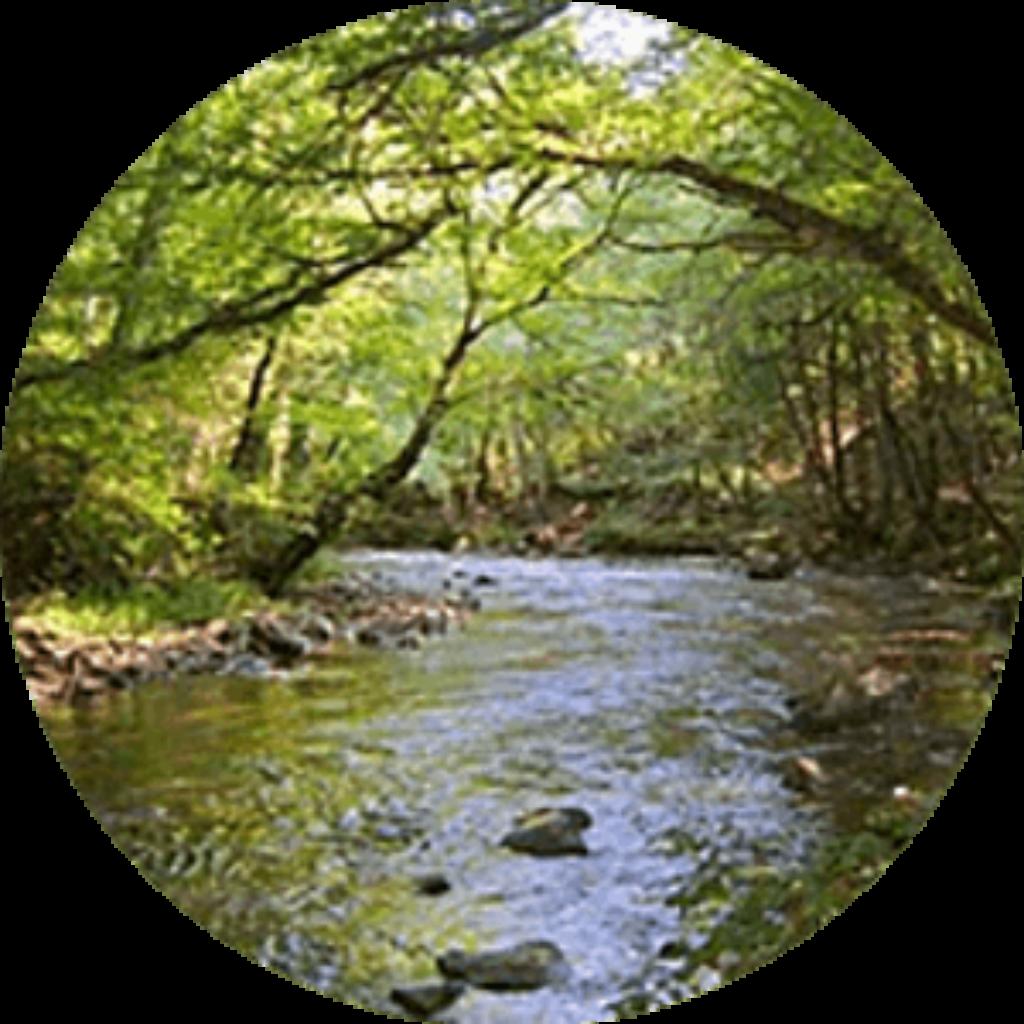 Viticulture et protection des rivières